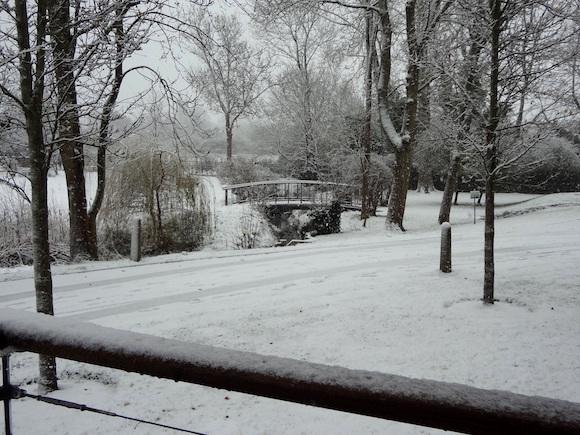 ケンブリッジの雪1.JPG