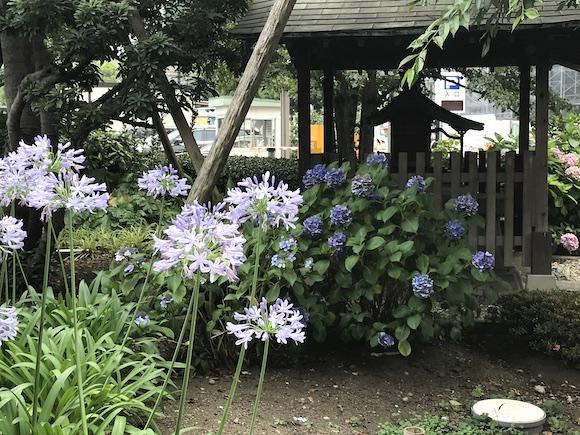 北里神社.JPG