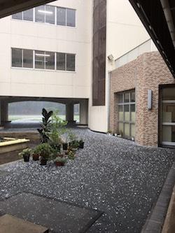 雹.JPG