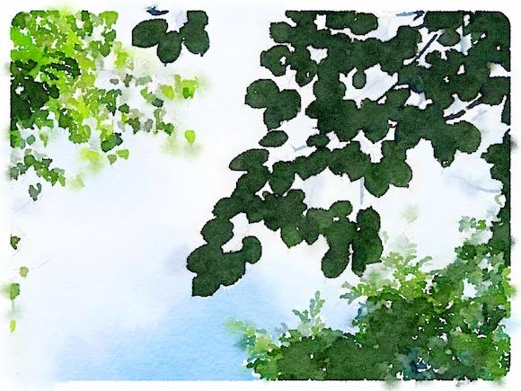 木の葉水彩風.JPG