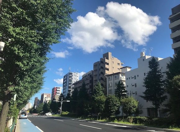 白山通り1.jpg