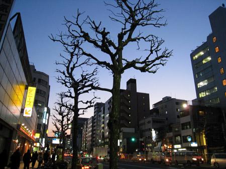 築地駅夕景.JPG